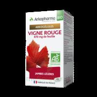 Arkogélules Vigne Rouge Bio Gélules Fl/45 à Sassenage