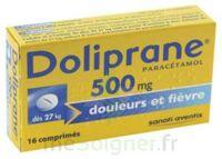 Doliprane 500 Mg Comprimés 2plq/8 (16) à Sassenage