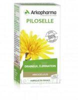 Arkogélules Piloselle Gélules Fl/45 à Sassenage