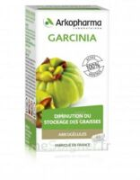 Arkogélules Garcinia Gélules Fl/45 à Sassenage