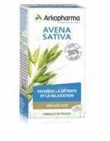 Arkogélules Avena Sativa Gélules Fl/45 à Sassenage