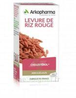Arkogélules Levure De Riz Rouge Gélules Fl/45 à Sassenage