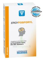 Ergyfosforyl Caps B/60 à Sassenage