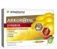 Arkoroyal Dynergie Ginseng Gelée Royale Propolis Solution Buvable 20 Ampoules/10ml à Sassenage