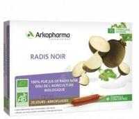 Arkofluide Bio Ultraextract Radis Noir Solution Buvable 20 Ampoules/10ml à Sassenage
