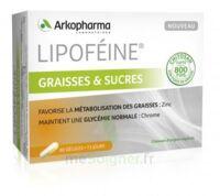 Lipofeine Graisse Et Sucres Gélules B/60 à Sassenage
