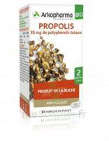 Arkogélules Propolis Bio Gélules Fl/45 à Sassenage