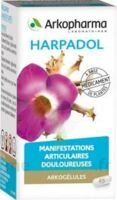 Arkogelules Harpagophyton Gélules Fl/150 à Sassenage