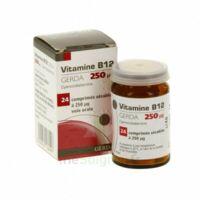 Vitamine B12 Gerda 250 Microgrammes, Comprimé Sécable à Sassenage