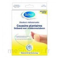 Scholl Coussin Plantaire Douleurs Métatarsales T2 à Sassenage