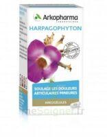 Arkogelules Harpagophyton Gélules Fl/45 à Sassenage