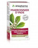 Arkogelules Marronnier D'inde Gélules Fl/45 à Sassenage