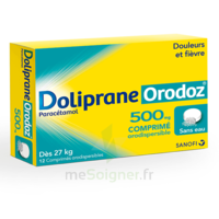 Dolipraneorodoz 500 Mg, Comprimé Orodispersible à Sassenage