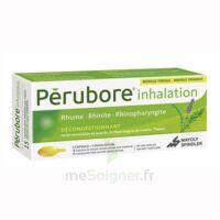 Perubore Caps Inhalation Par Vapeur Inhalation Plq/15 à Sassenage