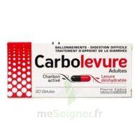 Carbolevure Gélules Adulte Plq/30 à Sassenage