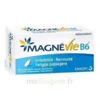 Magnevie B6 100 Mg/10 Mg Comprimés Pelliculés Plaq/60 à Sassenage