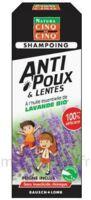Cinq Sur Cinq Natura Shampooing Anti-poux Lentes Lavande 100ml à Sassenage
