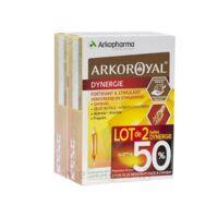Arkoroyal Dynergie Ginseng Gelée Royale Propolis Solution Buvable 2b/20 Ampoules/10ml à Sassenage
