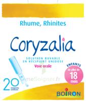 Boiron Coryzalia Solution Buvable Unidose B/20 à Sassenage