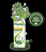 Phytoxil Toux Sans Sucre Sirop Adulte Enfant +2 Ans Fl/120ml à Sassenage