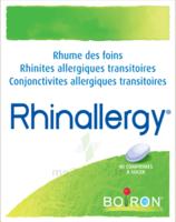 Boiron Rhinallergy Comprimés B/40 à Sassenage